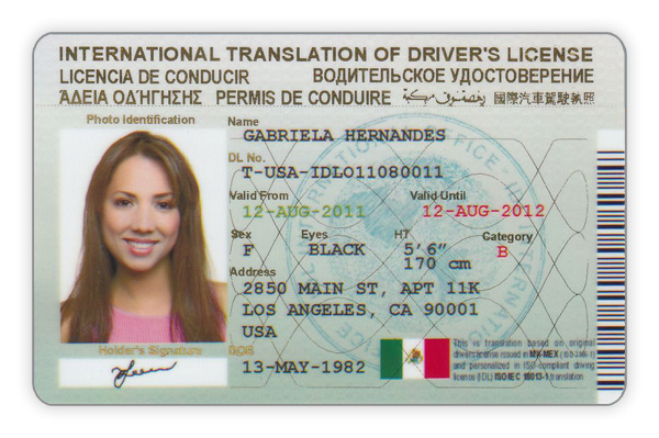 International Drivers License. Swedish Medical Center Colorado. Obtaining A Credit Score Pay Per Head Services. Best Hair Transplant Doctors In California. Low Body Temperature Flu Geico Accident Claim. Get Paid To Go To School Online. Chronic Hepatitis Panel Clean Fleet Auto Body. Data Center Companies In Usa. Odds Of Being In A Car Accident