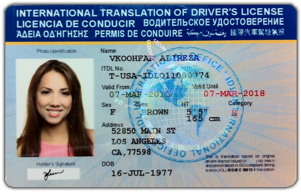 International International Drivers License Drivers